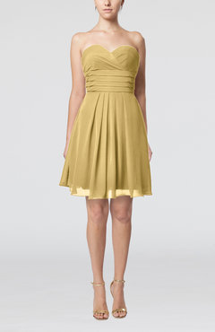 Gold Simple Sleeveless Zip up Chiffon Pleated Graduation Dresses