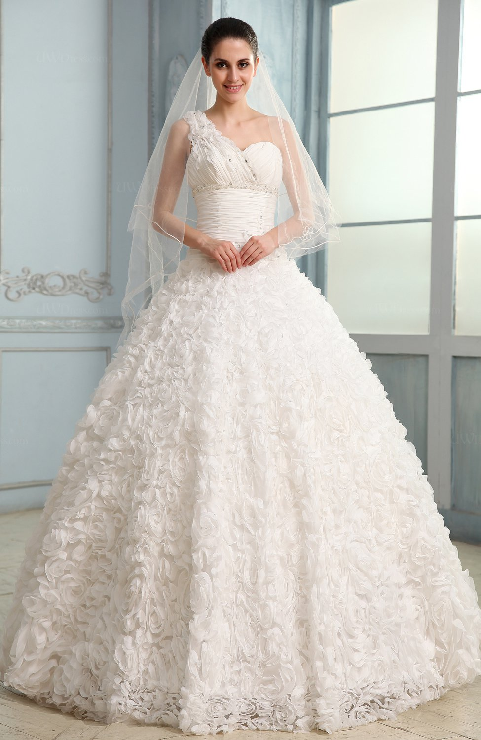 Modest hall ball gown sleeveless lace bridal gowns for Modest lace wedding dresses