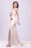 Gorgeous Sheath Thick Straps Sleeveless Criss-cross Straps Court Train Prom Dresses