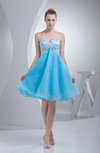 Sexy A-line Sleeveless Organza Lace Cocktail Dresses