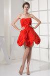 Gorgeous A-line Sleeveless Zipper Chiffon Club Dresses