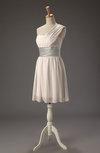 Romantic Sleeveless Zipper Chiffon Short Ribbon Little Black Dresses