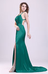 Gorgeous Sheath Thick Straps Sleeveless Criss-cross Straps Court Train Prom Dresses