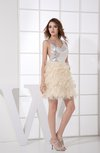 Sexy Sheath Sleeveless Zipper Organza Cocktail Dresses