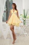 Romantic A-line Halter Zip up Paillette Homecoming Dresses