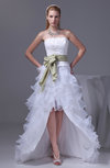 Hawaiian Outdoor Strapless Zipper Organza Floor Length Tiered Bridal Gowns