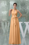 Plain A-line Halter Sleeveless Backless Chiffon Evening Dresses