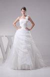 Cinderella Hall Princess Backless Organza Court Train Bridal Gowns