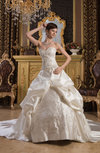 Allure Bridal Gowns Disney Princess Ball Gown Western Fall Classic Winter