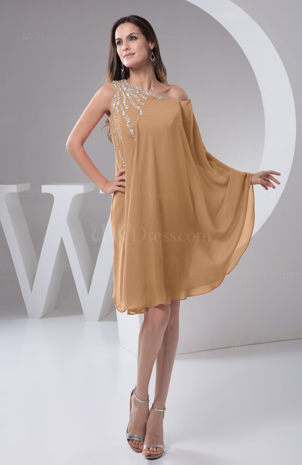 Light Brown Chiffon Bridesmaid Dress Maternity Outdoor Plus Size Autumn A  line Modern