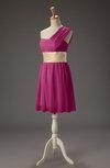 Romantic Asymmetric Neckline Sleeveless Zipper Mini Sash Prom Dresses