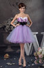 Affordable Quinceanera Dress Inexpensive Amazing Mini Flower Chic Strapless